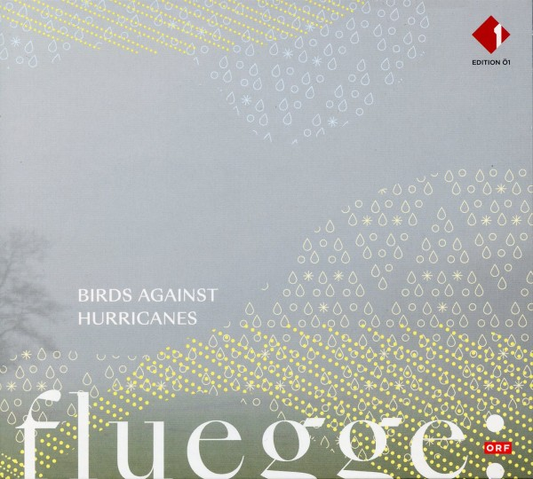 Birds Against Hurricanes: fluegge: